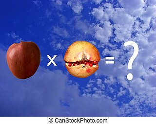 Wrong operation - Impossible multiplication of an apple and...