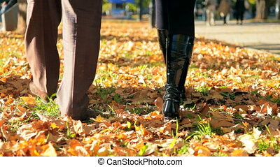 Romantic couple walking in autumn - romantic couple feet go...