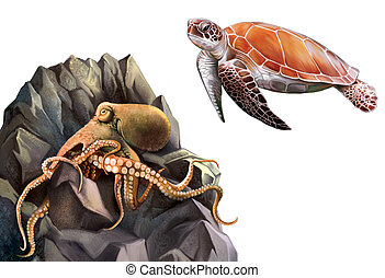 Turtle and Octopus in the rocks. Isolated realistic...