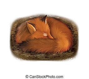 Sleeping red fox in its hole, Isolated realistic...