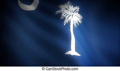 Flag of South Carolina seamless