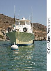 Boats Moored at Catalina Harbor