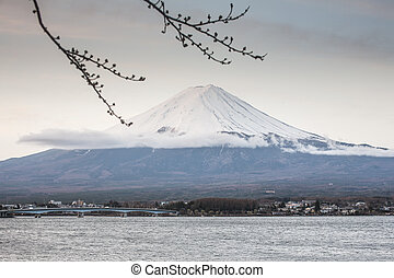 First Cherry Blossom with Mt Fuji