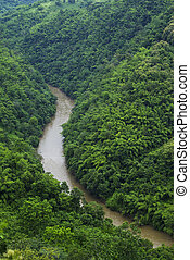 Curve river in forest mountain