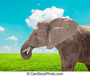 Portrait of huge African elephant in nature