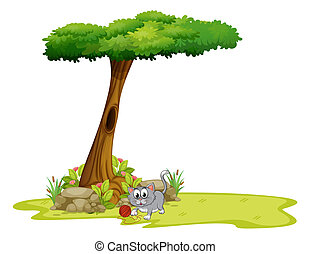 A gray cat under a tree with a hole