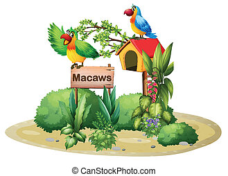Two colorful parrots above a signboard and a birdhouse -...