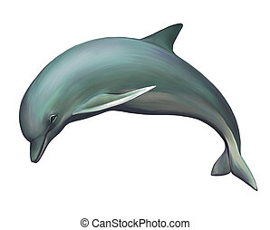 Young Dolphin. Isolated Illustration on white background.