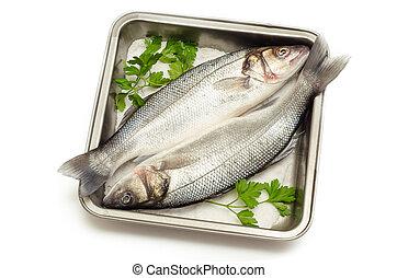 Sea bass - fresh sea bass on baking tray