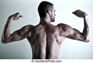 espalda,  muscular, hombre