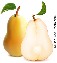 Ripe pears with green leaves - vector. Ripe pears with green...