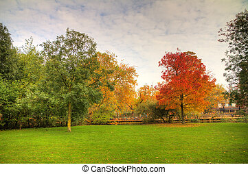 Autumn Vondelpark - Autumn trees in the Vondelpark in...