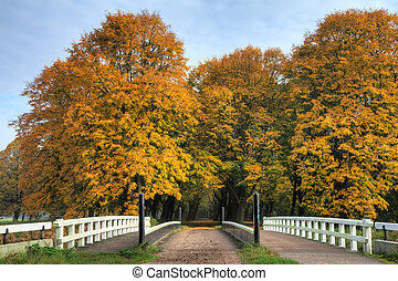 Amsterdamse bos entrance - Entrance to the forest in het...