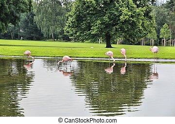 Dortmund park - Dortmund - city in Ruhrgebiet Ruhr...