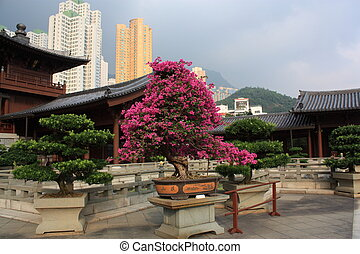 Buddhist Temple in Hong Kong - Chi Lin Buddhist Temple and...