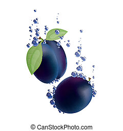 Vector Plums Falling in Liquid - Vector Illustration of...