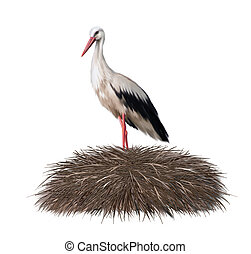 Adult stork standing in its nest. Spring. illustration on...