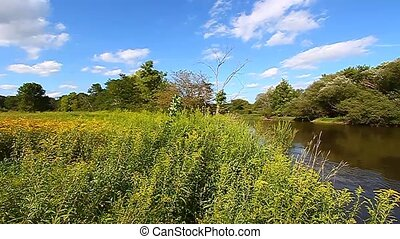 Kishwaukee River and Chirping Birds - Birds chirp along the...