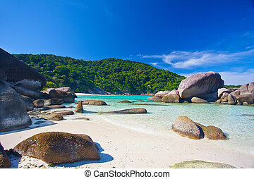 tropical island surrounded by cliffs and jungle -...