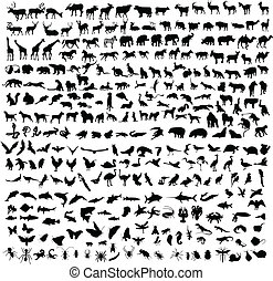 300 animals - 300 vector silhouettes of animals mammals,...