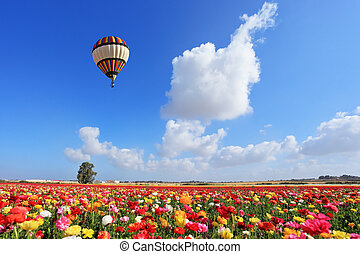 Bright striped balloon flies over a field of colorful garden...