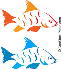 Vector image of an fish on white background