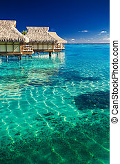 Water villas over tropical reef - Water villas over tropical...