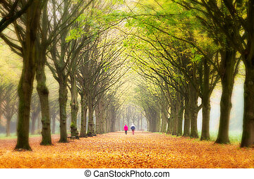 Life in autumn - Elderly couple walking in the forest in...