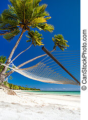 Empty hammock under palm trees and details of sand - Empty...