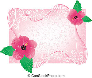 frame with hibiscus