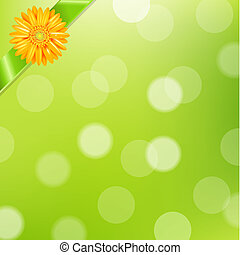Green Nature Background With Yellow Gerbers And Green Ribbon...