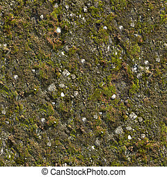Mossy Wall Seamless Texture. - Mossy Wall. Seamless Tileable...