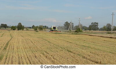 tractor harvest wheat