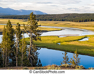 Yellowstone's Heyden Valley - The Yellowstone River meanders...