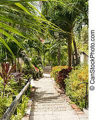 Famous 99 steps Charlotte Amalie - Ninety nine steps framed...