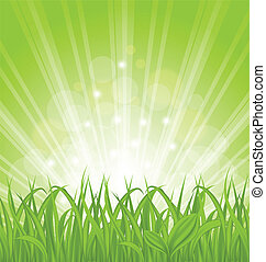 春, 草, 緑, 背景