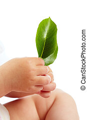 Fragility - Conceptual image of hands of baby holding fresh...