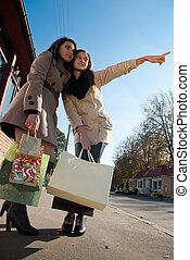 Two young pretty women with bags