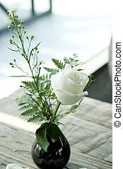 White rose in black vase.