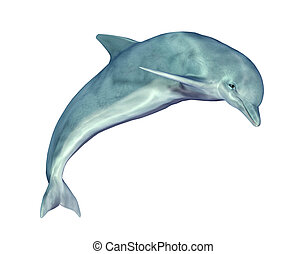 Jumping Dolphin - Computer generated 3D illustration with a...