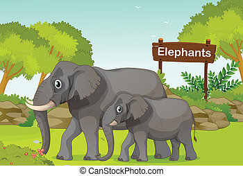 Two elephants with a wooden sign board at the back -...