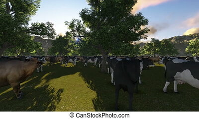 Cows on green meadow and mountain, fly over