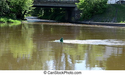 buoy river neris - Green buoy in center of flowing river...