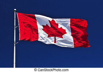 Canadian flag - Flag of Canada waving in the wind on blue...
