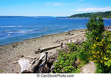 Tacoma NE Browns Point Puget Sound. Beach with Northwest...