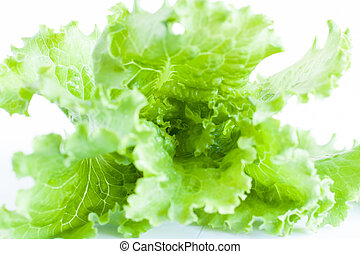 green salad on white background, close-up