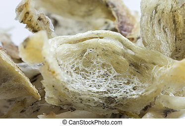 Detail of swiftlet nest - Bird nest soup is a delicacy for...