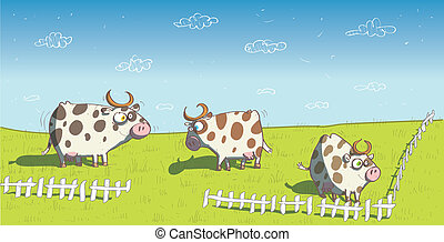 Happy Cows on Grassland - Happy Cows on Grassland....