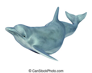 Swimming Dolphin - Computer generated 3D illustration with a...