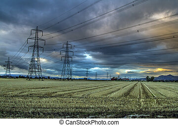 Electricity Pylons in a corn fiels at sunset in Scotland
